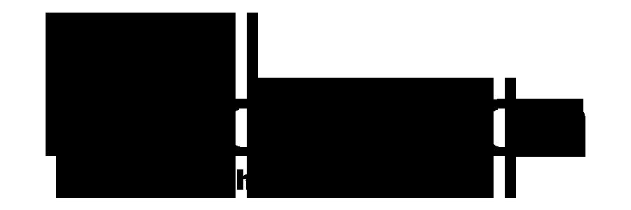 Photomotion-Logo